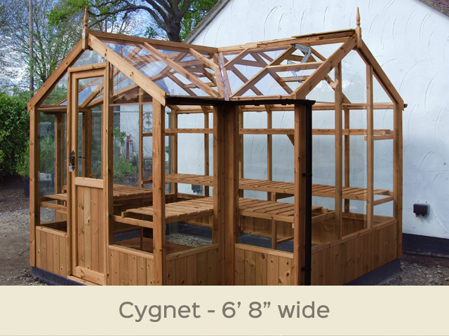 "<p id=""boldtitle"">Cygnet T-Shaped Greenhouse</p>6'8"" x 11'5"" (2034 x 3490mm) <br/>As standard: At least four roof vents with autovent/s (pro-rata) - toughened glass - staging along the two front returns - guttering along the two front returns - delivery & installation. <br/>Options shown: Rear staging - high level shelf - ornate black handle. <br/>"