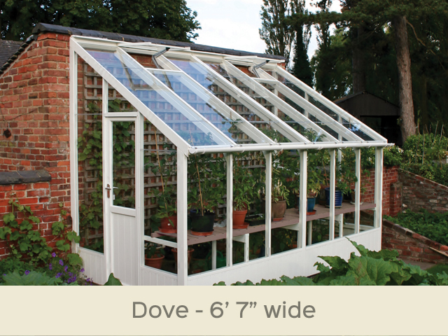 "<p id=""boldtitle"">Dove Lean To Greenhouse</p>6'7"" x 12'7"" (2010 x 3840mm) <br/>As standard: At least one roof vent with autovent/s (pro-rata) - toughened glass - staging along one side - delivery & installation. <br/>Options shown: Painted Lily - gutter system. <br/>"